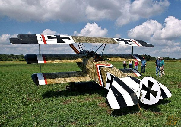 Fokker Dr.I Triplane on the grass